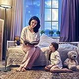 Top 10 Lampe Wohnzimmer Alexa - Deckenleuchten - Rapeutic